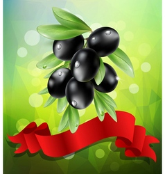 Black olive branch with red ribbon vector