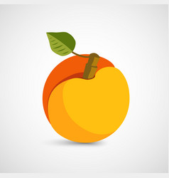 peach with leaf isolated on background vector image