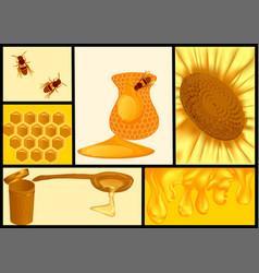 Sweet honey set vector