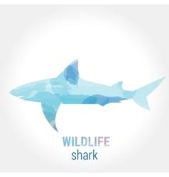 Wildlife banner - fish shark vector