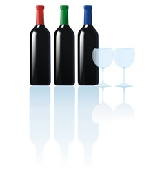 bottles black shadow vector image vector image