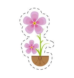 magnolia flower flora growing vector image