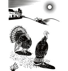 Two turkeys scratching near a farm vector