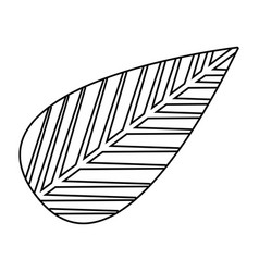 monochrome silhouette of tree leaf vector image