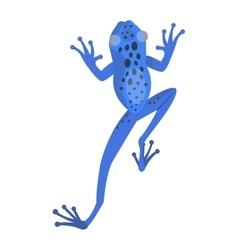 Frog cartoon tropical animal vector image vector image