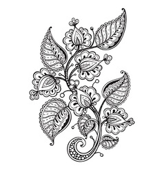 hand drawn fancy flower branch and leaves vector image vector image