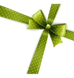 isolated green polka dots bow vector image