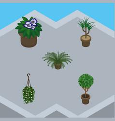 Isometric plant set of plant blossom houseplant vector