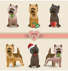 Terrier collection vector