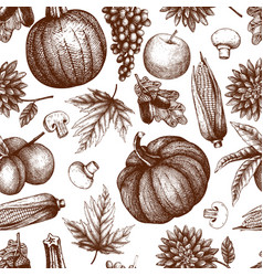 Vintage autumn festival pattern vector