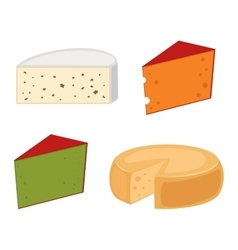 Cheese varieties vector