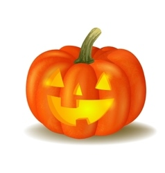 Halloween pumpkin on white vector image