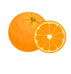 set of fresh ripe half oranges vector image
