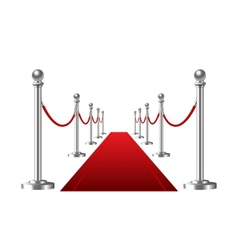 Red event carpet isolated on a white background vector