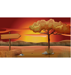 Scene of field at sunset vector