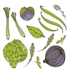 Colorful set of fresh handdrawn vegetables vector image vector image