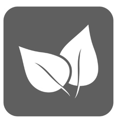 Flora Plant Flat Squared Icon vector image