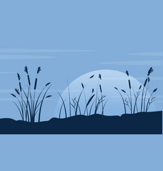 silhouette of course grass with moon landscape vector image vector image