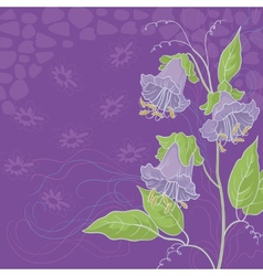 Flowers kobe and abstract pattern vector image vector image