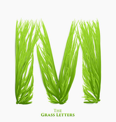letter m of juicy grass alphabet green m vector image