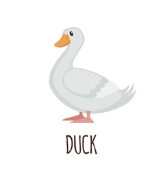 Cute Duck in flat style vector image