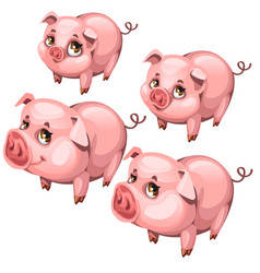 Pink cute shy pig in cartoon style animal vector