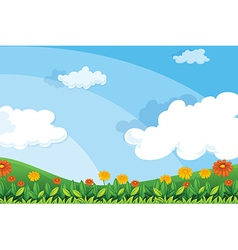 Flowers at the hillside vector image
