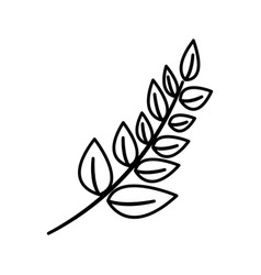 Contour plant branch decoration design vector