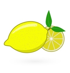 Fresh lemons with leaves vector image