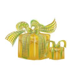 birthday present vector image
