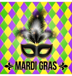 Black Mardi Gras mask with feathers on grid vector image