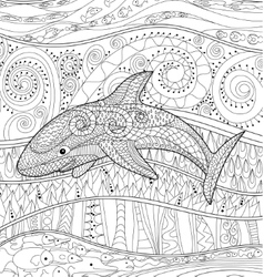 Happy shark with high details vector image