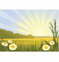 sunny landscape vector image