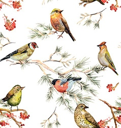 Seamless texture of forest birds watercolor vector