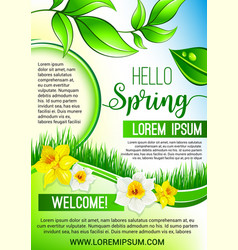 Green floral poster for hello spring design vector