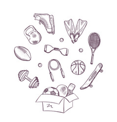 hand drawn sports in box vector image vector image