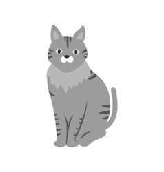 Pet cat vector