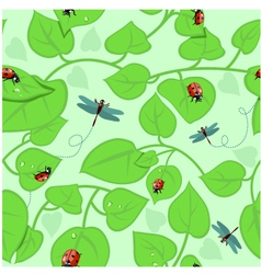 Background with leaves ladybirds and dragonflies vector image