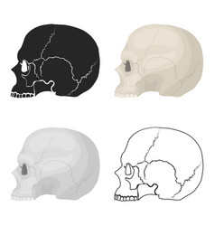 Skull icon in cartoon style isolated on white vector
