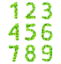 floral number vector image vector image