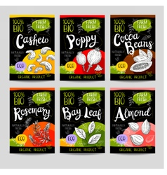 Set of hand drawn labels food spices vector