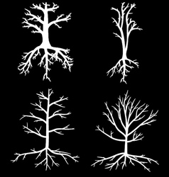 Trees with dead branches and roots vector