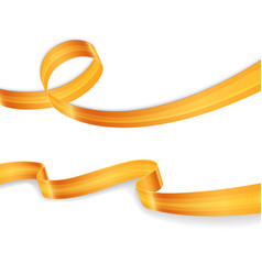 Golden ribbons set image vector image