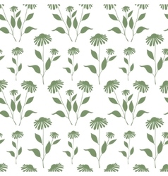 Seamless pattern with green echinacea plant vector