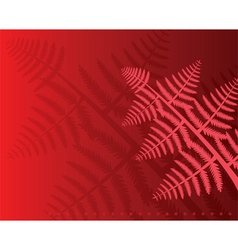 Fern leaves vector