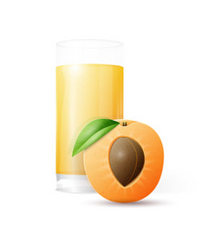 Half apricot and glass of juice vector