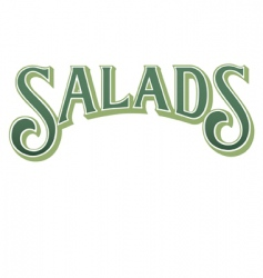 salads vector image
