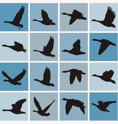 wild geese pattern vector image vector image