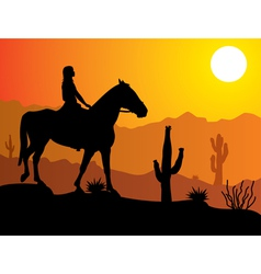 woman on the horse vector image