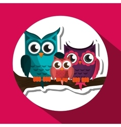 Group of owls  graphic design vector